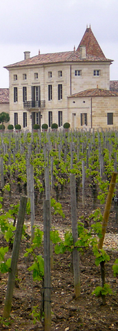 DiscoverVin-grape varities-chateau with grape vines